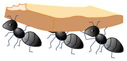 アリのちからを借りよう!